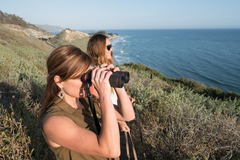 carpinteria-bluffs-binoculars